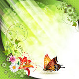 Springtime background. With flowers and butterflies Stock Photos