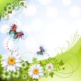 Springtime background Royalty Free Stock Image