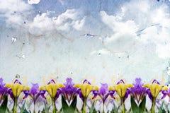 Springtime background Stock Photo