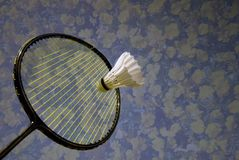 Springtime badminton stock photography