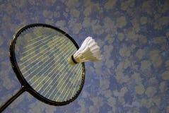 Springtime badminton Stock Photography