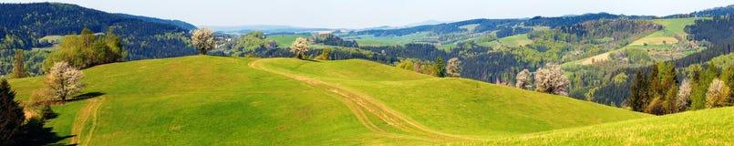 Springtime beskådar från Carpathian berg Fotografering för Bildbyråer