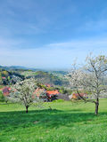 Springtime in Black Forest,Germany Stock Photos