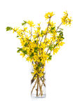 Springtime Bouquet Royalty Free Stock Photography