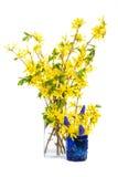 Springtime Bouquet Stock Image
