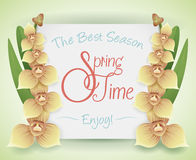 Springtime Card with Orchid's Branches, Vector Illustration Royalty Free Stock Photo