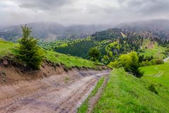 Springtime in Carpathian mountains. Beautiful scenery on a rainy day with overcast sky. country road runs uphill through grassy hill in to the distance Stock Photos
