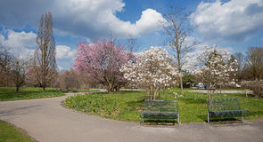 Springtime at city park munich east Stock Photography
