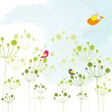 Springtime colorful bird floral wallpaper Stock Image