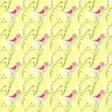 Springtime Colorful Cosmos Flower Seamless Pattern Stock Photography