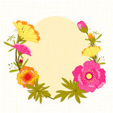 Springtime Colorful Flower Background Royalty Free Stock Image