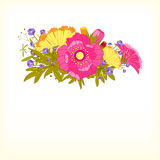 Springtime Colorful Flower Greeting Card Stock Photo