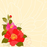 Springtime Colorful Flower Greeting Card Royalty Free Stock Photography