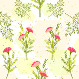 Springtime Colorful Flower with Herb Background. Pattern Royalty Free Stock Photos