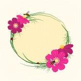 Springtime Cosmos Flower Background. Springtime Cosmos Flower with Bees Background Stock Image
