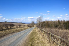 Springtime country road Stock Photos