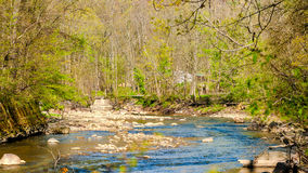 Springtime creek Royalty Free Stock Photos