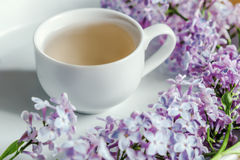 Springtime. Cup of tea and lilac morning bouquet on the table.  White background. Cup of tea with lilac spring flowers on the wood table. White background Royalty Free Stock Image