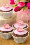 Springtime Cupcakes Royalty Free Stock Images