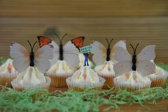Springtime cupcakes topped with decorations of butterfly shapes on a rustic wood background stock image