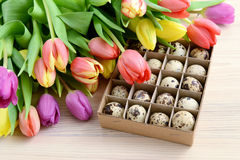 Springtime decoration with tulips and Quail eggs Stock Image