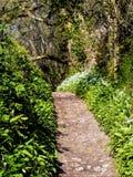 Springtime In Dorset Royalty Free Stock Image