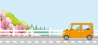 Springtime Drive, Senior couple, Anonymity. Vector Illustration royalty free illustration