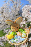 Springtime easter Royalty Free Stock Photo