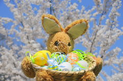 Springtime easter bunny and eggs Stock Photo