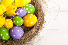 Springtime Easter nest with eggs Royalty Free Stock Images