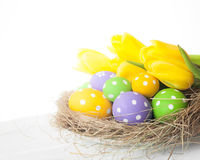 Springtime Easter nest with eggs Stock Images