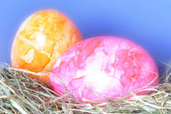 Springtime - Eastern Eggs Royalty Free Stock Images