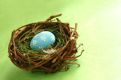 Springtime Egg in Nest. Great concept shot for home decor, redecorating, Easter, spring, rejuvenation, birth, growth, etc. Space for copy royalty free stock photo