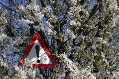 Springtime exclamation mark Royalty Free Stock Images