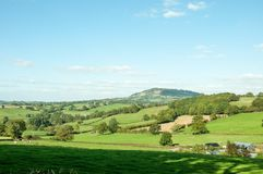 Springtime farm fields in the hills in the English countryside. A springtime farming and agricultural scene of some crops growing in the English countryside of Royalty Free Stock Photography