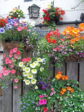 Springtime Flower Baskets on Wood Fence Stock Photo
