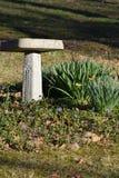 Springtime flowers and a birdbath Stock Image