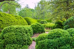 Springtime, formal garden landscape in park.  Royalty Free Stock Photography
