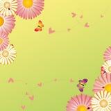 Springtime frame flowers butterflies ladybirds Stock Image