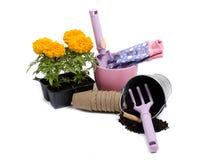 Springtime garden Stock Images