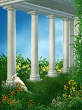 Springtime garden 7 Stock Images