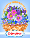 Springtime garden flowers in basket. Springtime greeting card of flowers bouquet in wicker basket. Vector bunch of crocuses or violas and garden lily of valley Stock Images