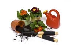 Springtime gardening Stock Photos