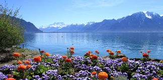 Springtime at Geneva lake, Montreux, Switzerland Stock Photography