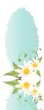 Springtime greedingcard Stock Photo