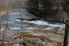 Springtime gushing stream Royalty Free Stock Image