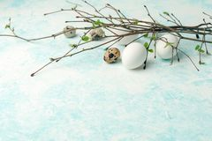Springtime holiday seasonal background - eggs and fresh greenery branches on light white-blue background, copy space, simple. Concept stock photography