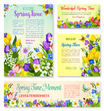 Springtime holidays floral banner template set. Springtime holidays banner template set. Spring flower greeting card with text layout, edged by tulip, lily of vector illustration