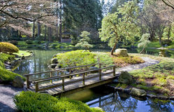 Springtime Japanese Garden Stock Photo