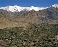 Springtime in Ladakh-2 Stock Image